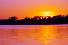 "Sunset over the Lake • <a style=""font-size:0.8em;"" href=""http://www.flickr.com/photos/134137971@N02/29918087074/"" target=""_blank"">View on Flickr</a>"