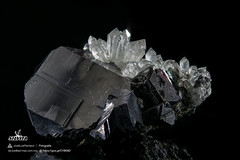 Galena y Cuarzo (Mr Giuseppe) Tags: mineral minerales geologia mineralogia rocas rocks crystals geology mineralogy