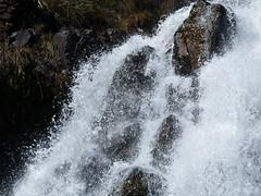 P1110073-Waratah Falls-A (elisabethgleave) Tags: waterfall waratah