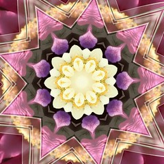 Yellow Flower in Pink Petals and Transparent Star Frame (Crystal Writer) Tags: crystal crystalamurray crystalmurray crystalwriter crystalwriterchristianwriter christian writer picture image capture creation creativity create digital kaleidoscope kaleidoscopes kaleidoscopic kaleidescope kalidascope calidascope kaleid optical abstract design pattern mirrored reflection light color colour kaleider kindlefire photostudiopro photostudioproapp kvad androidapp irfanview mehdi plugin