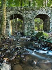 20161015Brcke-16 (s.schulthess) Tags: bridge brcke bro pont wald forest frat baum tree arbre wasser water bach river moos landschaft landscape natur nature schweiz switerland