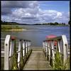 Blick über die Elbe an einem wunderschönen Sommertag (EXPLORED) (Gabriele Willig) Tags: wasser fluss elbe wolken sommer anleger steg geländer wendland hitzacker wussegel hasselblad zeiss planar analog mittelformat mediumformat square 6x6 velvia fujifilm