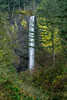 Latourell Falls View (M3tr1c) Tags: latourell falls waterfall water flow river creek oregon columbia gorge lichen moss yellow rocks