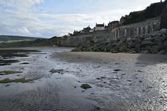 Robin Hood's Bay (389) (rs1979) Tags: robinhoodsbay northyorkshire yorkshire beach rockyforeshore seawall