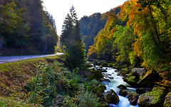 Longeant la Dranse (Diegojack) Tags: paysages france montagnes alpes hautesavoie automne couleurs rivires dranse d902