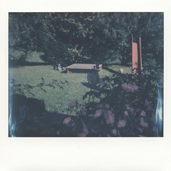 Foto Polaroid Image 0001 (marlis-art) Tags: imagespectra farbfoto impossible film polaroid