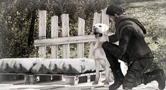 Dogs are the best friends (xxStanxx (Client & Sponsor list open)) Tags: secondlife scene virtualworld urworld maleshop eclipsedesign goose gabriel noproject