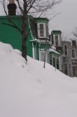 St. John's, LeMerchant Rd, Houses (Joseph Topping) Tags: newfoundland canada winter