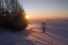 ... Winterwonderland ... (Geronimo52) Tags: natur nature panoramio463592775446065 landscape landschaft sonne sun sundown winter snow schnee sonnenuntergang