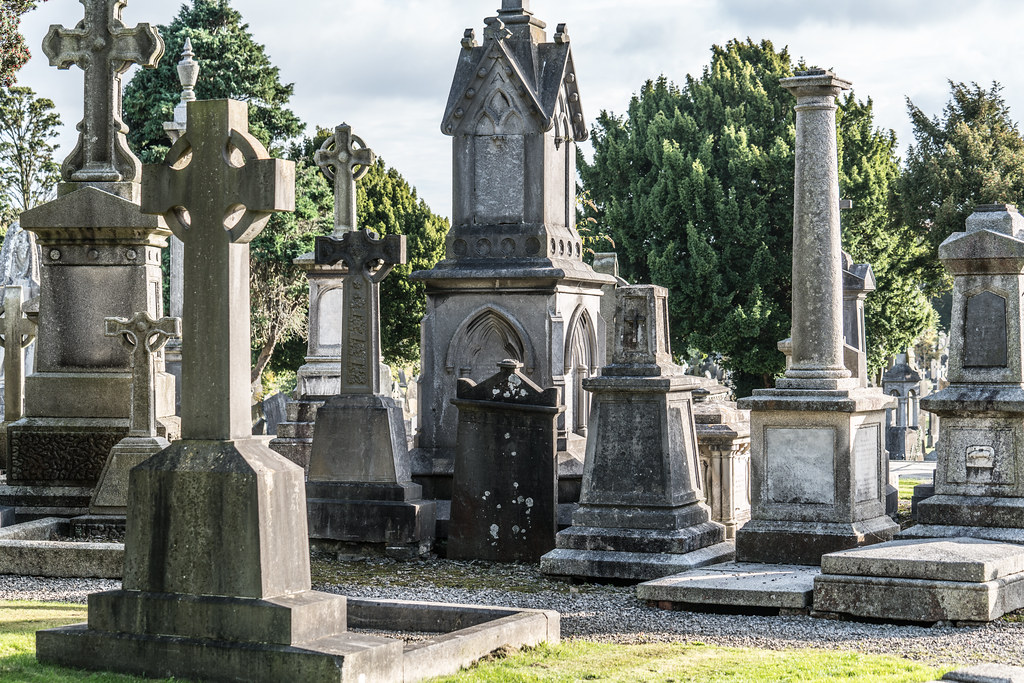 A QUICK VISIT TO GLASNEVIN CEMETERY[SONY F2.8 70-200 GM LENS]-122111