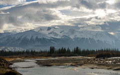 Snow Capped Mountains (Witty nickname) Tags: jasper jaspernationalpark athabascariver clouds landscape albertalandscape alberta albertasky nikond800 therockymountains rockymountains snow