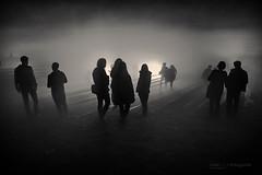 nimes que busquen la llum (Rosa Ais) Tags: 2015 lluernia olot ombres shades rosaaisfotografia bn blackandwhite blancoynegro monocromatico monochrome bw landscape noche people shadow dark