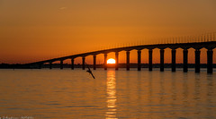 """Bridge of the """"île de Ré"""" (Seb_17) Tags: coucher de soleil bridge ile ré pecheur mer sea sun top20bridges"""