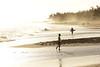 Skimboarders au coucher de soleil (Tordobal84) Tags: océanindien étangsalélesbains étangsalé sunset réunion reunionisland iledelaréunion archipeldesmascareignes coucherdesoleil iledelareunion oceanindien etangsalelesbains mascareignes reunion 974 plage soleil skimboarders skimboard filaos sable