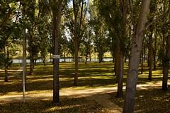 610_0822_2048 (a.marquespics) Tags: parque park jardim garden outono autumn pontedesor ribeiradesor alentejo altoalentejo portalegre portugal nikon d610 28105mmf3545d arvoredo grove