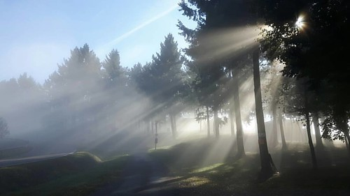 Herfst bij Landal Mont Royal