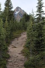 IMG_0485 (ctmarie3) Tags: banffnationalpark peytolake