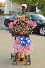 Robert Parish (radargeek) Tags: waco tx texas downtown stroller