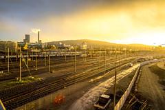 Hardbrücke Morning: Gold overflow (3/3) (jaeschol) Tags: europa hardbruecke kantonzürich kontinent kreis5 morgen morning schweiz sonne stadtzürich switzerland zeit