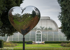 Kew -Winter 2016-3.jpg (Colin Dorey) Tags: palmhouse glitterheart reflections kew kewgardens richmond surrey uk london botanicgardens botanic winter 2016 park gardens autumncolours trees christmasatkew christmas christmasdecorations decorations daytime daylight reflaction glasshouse greenhouse hothouse