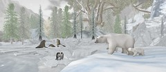 daddy ! can we get a avatar for breakfast today ? (flubs) Tags: snow winter outdoor landscape nature sl secondlife slphotography flickr dreamy firestorm animal