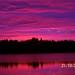 Cedar Lake 2 - M Labbe