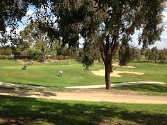 Players on the golf course (spelio) Tags: australia 2015 email travel act ipad actcanberrasept2015walkstrollwanderscenic ngunnawal walk 2913 australiancapitalterritory lakesgolf