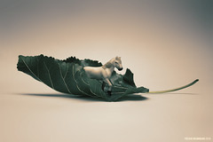 108 / 365 (littlebrickbox) Tags: horse plant abstract tree art toy leaf creative surreal conceptual canon600d