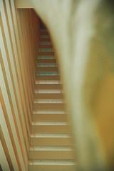 Singapore - February 2015 (bortescristian) Tags: city trip holiday water skyline marina canon photography bay singapore waterfront outdoor february sands cristian singapur metropol singapura marinabay  2015    bortes  bortescristian cristianbortes           singapr