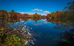 Fall in Long Island, NY (djrocks66) Tags: autumn trees sunset sky color fall nature colors birds animals sunrise landscape landscapes fishing woods fuji seasons lakes foliage fujifilm ponds waterscape waterscapes xt1