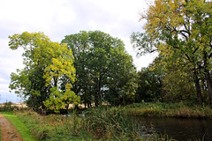 By the moat at Elingaard (Ib Aarmo) Tags: autumn trees tree fall colors norway landscape outdoor moat cultural fredrikstad elingaard