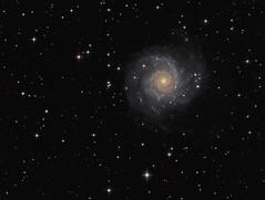 M74 (drdavies07) Tags: messier74 m74 qsi583