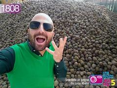 Foto in Pegno n 1808 (Luca Abete ONEphotoONEday) Tags: verde green sunglasses novembre 12 selfie 2015 1808 cumulo pigne mucchio