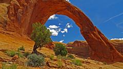 Corona Arch (upsa-daisy) Tags: