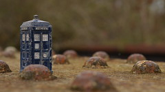 In the Land of the Daleks (mitchell_dawn) Tags: toys rivets rusty police doctorwho weathered disused drwho dalek tardis railwaybridge dinky alienlandscape