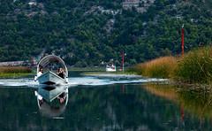 Skadar Lake National Park (Dmitriy Sakharov) Tags: park travel lake nationalpark national montenegro skadar
