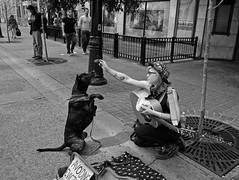 Snacktime! (Sherlock77 (James)) Tags: calgary downtown streetportrait people woman dog busker musician guitar