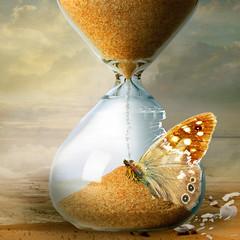 Hourglass (jaci XIII) Tags: ampulheta borboleta inseto animal vidro surrealismo areia insect butterfly hourglass sand glass surrealism