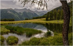 Val di Peio (Eric@focus) Tags: greatphotographers valley pond trees mountains italy trentino