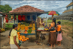 Fruits.  Matara (Claire Pismont) Tags: streetshot street streetphotography srilanka matara dondra uthpalawarna devinuwara vishnu documentory travel travelphotography clairepismont pismont fruit seller temple woman women umbrella