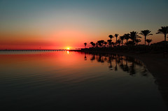 good morning (werner boehm *) Tags: wernerboehm egypt sunrise beach palms