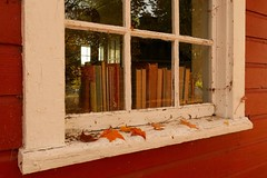 Leaves & Window (3) (deanspic) Tags: lostvillagesmuseum lostvillages wind windy gust gusty leaves maple mapletree motion fall falling autumn fall2016 g3x tree school schoolhouse red books window redschoolhouse rural