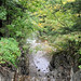 0743 Buttermilk Falls State Park