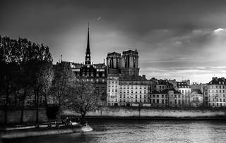 L'île de la cité (Paris)