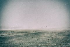 the stray souls II (johann walter bantz) Tags: brume fog beach normandy nikon d4s 2870mm surrealist mystic etrange france