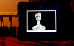 10,000 year old art (bluebird87) Tags: ipad art dx0 c41 epson v600 film kodak ektar 100 mamiya m645
