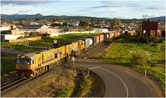 Trains In Tasmania - TR04 + TR03 at BrightonA (Trains In Tasmania) Tags: australia tasmania tasrail train freighttrain goodstrain trclass tr caterpillar diesellocomotive canoneos550d ef35350mm13556lusm trainsintasmania stevebromley brighton tr04 panorama