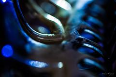 Mysterious - Macro Mondays (Bouhsina Photography) Tags: mysterious macromondays mondays macro hmm bokeh light night lumire nuit mystre canon 5diii ef100mm bouhsina bouhsinaphotogrphy