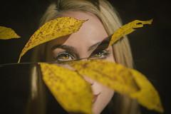 Eyes (-=AE=-) Tags: hazel eyes portrait pretty new york city nyc fall foliage canon 6d 50mm