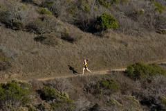 SL20161104-033.jpg (Menlo Photo Bank) Tags: crosscountry action girl sports favorite event individual people 2016 photobysallyli upperschool meet fall student menloschool eliza atherton ca usa us